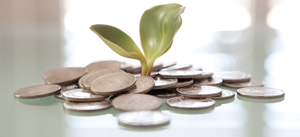 Image of a plant growing out of coins and money